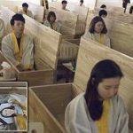 子どもに見せたい動画60「死ぬってどういうこと?韓国の『命の授業』」