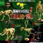 科学ガチャ⑧「骨格ミュージアム3氷河期•ルーツ編」