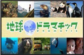 授業で見せたい動画4「地球ドラマチック」