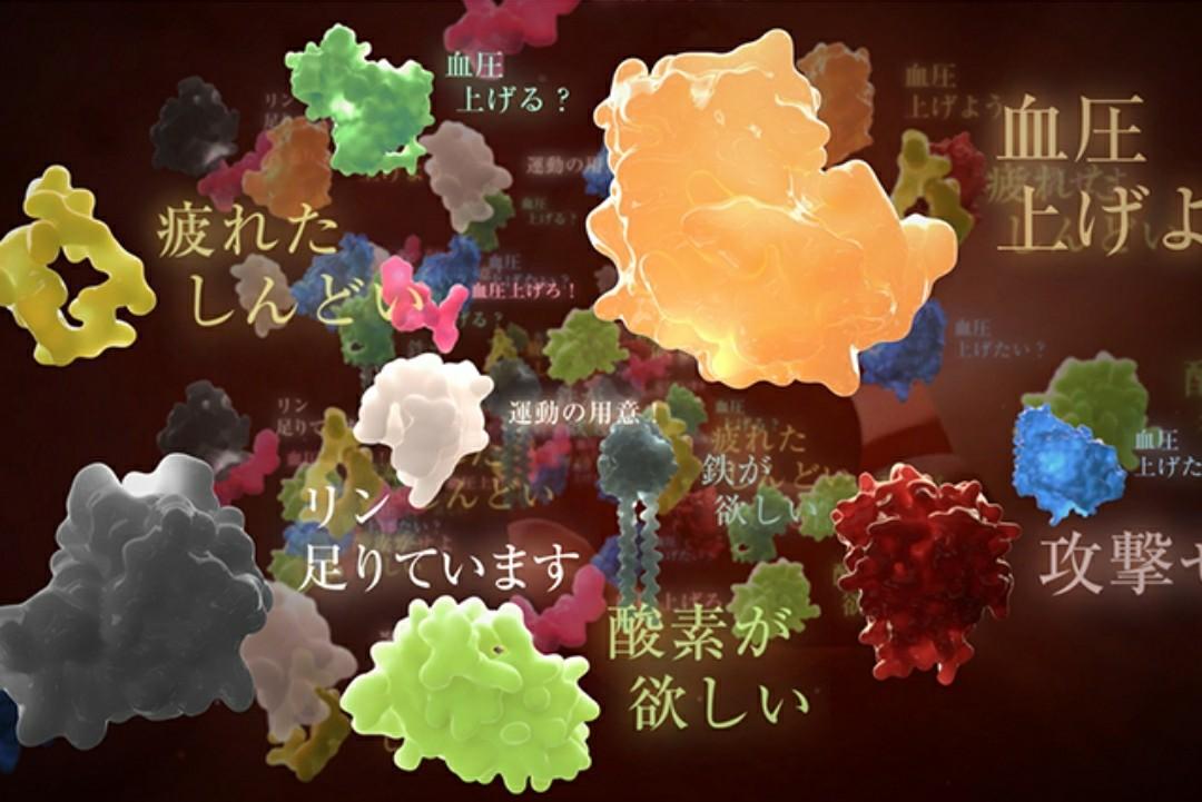 理科教師なら録画予約!NHKスペシャル「シリーズ人体」が面白そう
