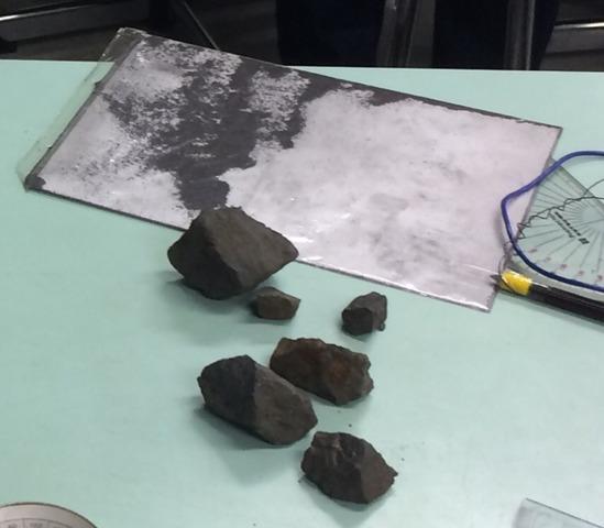鉄粉で磁力線の観察実験
