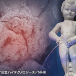 """NHKスペシャルシリーズ人体「""""腎臓""""が寿命を決める」今夜放送"""
