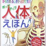 人体模型がないなら「ポップアップ人体絵本」がオススメ