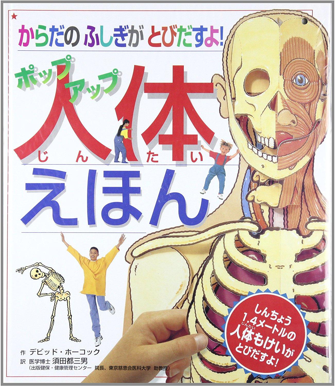 人体模型がないなら「ポップアップ人体図鑑」がオススメ
