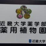 近畿大学薬学部の薬用植物園に行ってきました
