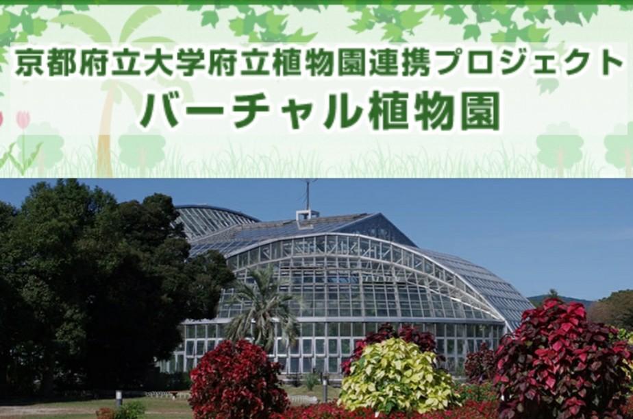京都府立大学府立植物園連携プロジェクト「バーチャル植物園」を授業に活用