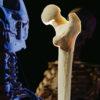 """理科教師なら録画予約!NHKスペシャル「シリーズ人体 第3集 """"骨""""が出す! 最高の若返り物質」"""