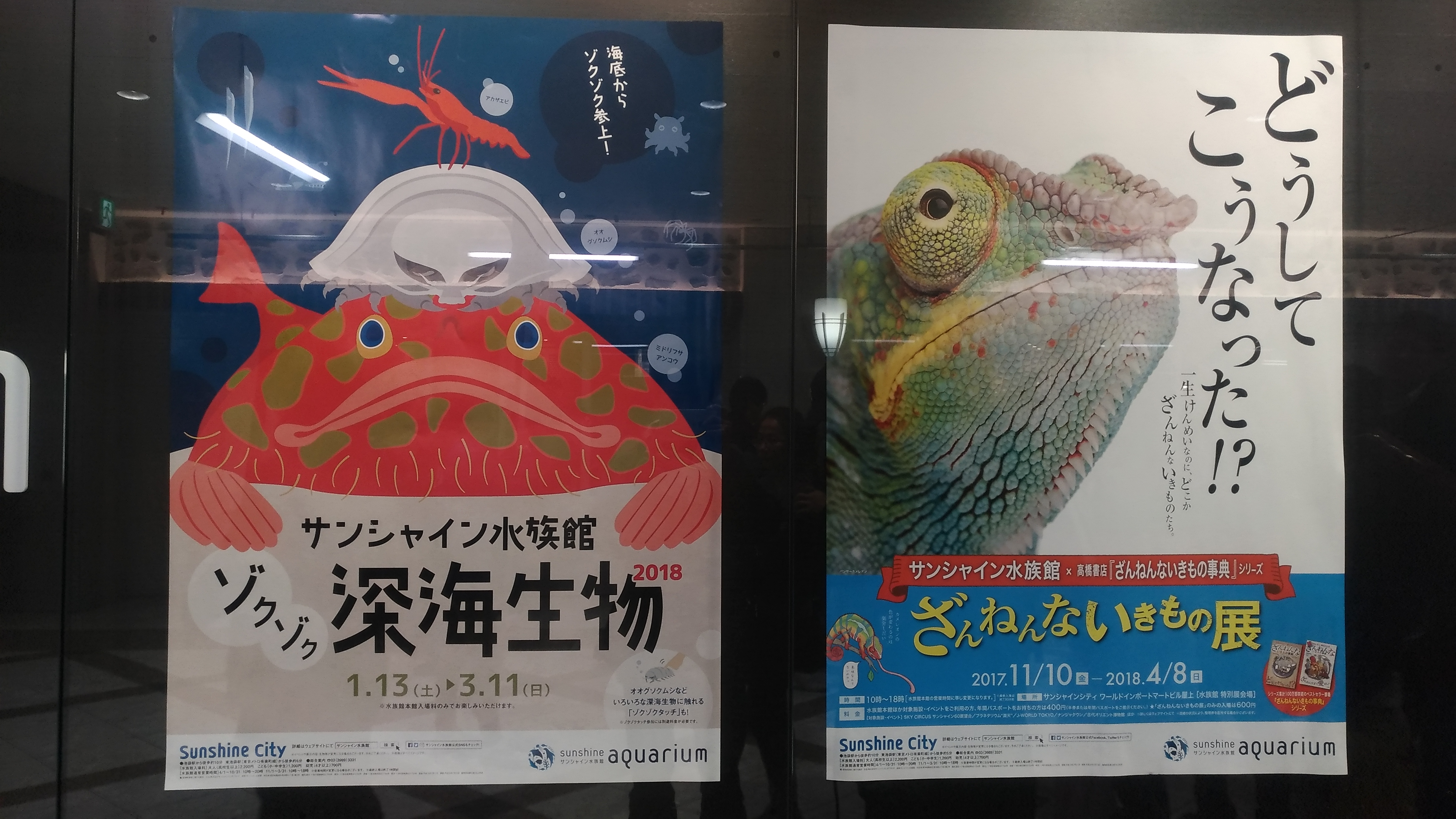 サンシャイン水族館に行ってきました3特別展編