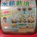 科学がちゃ「野菜をつくろう水耕栽培セット」