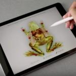 Google 教育向けChromeOSタブレット VS Apple Pencil対応 第6世代iPad 教育界のタブレット戦争