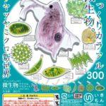 科学がちゃ「微生物アクリルマスコット」&「透明標本アクリルマスコット」
