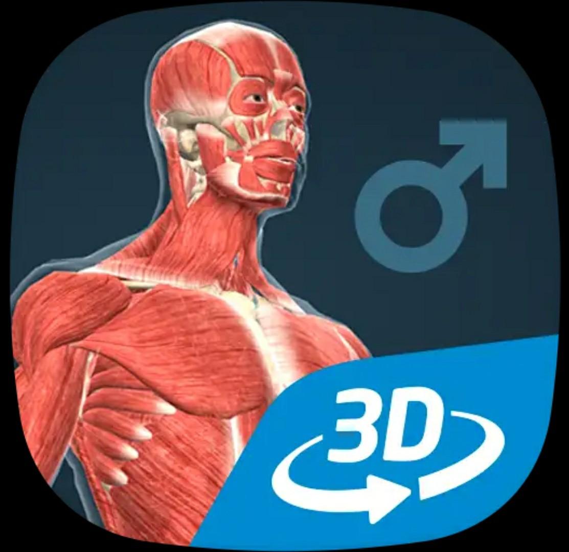 人体について学べるアプリ「人体 (男)インタラクティブな教育用3D」