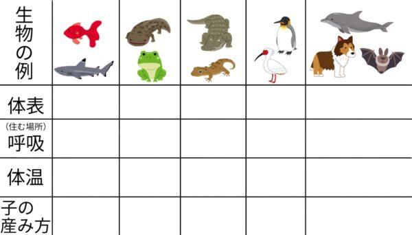 セキツイ動物の分類