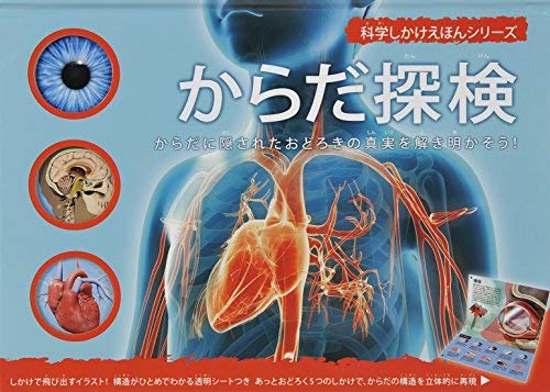 飛び出す絵本大日本絵画の「からだ探検」が面白い!