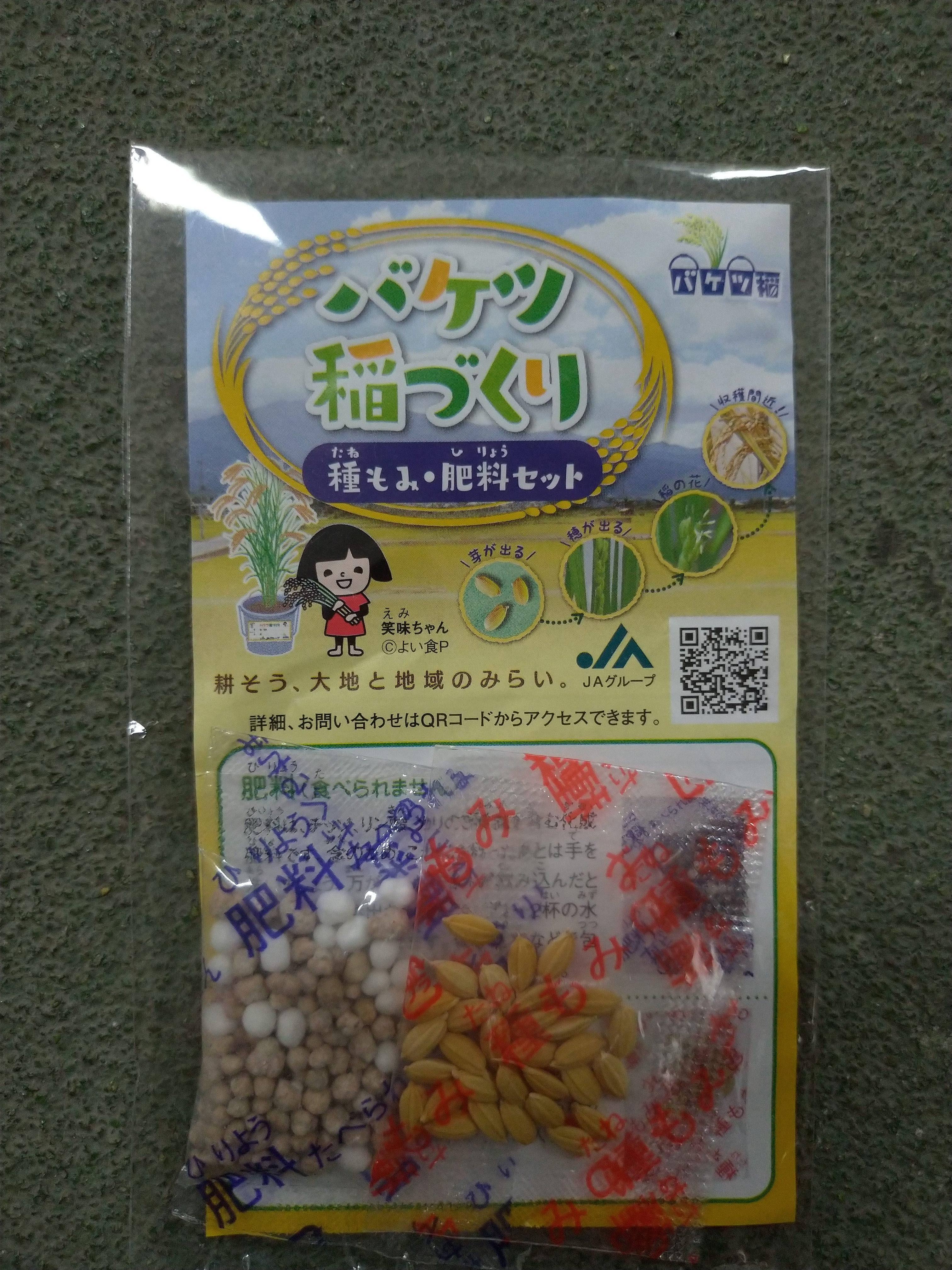 JAグループのバケツ稲づくり種もみ肥料セットで米作りを学ぶ