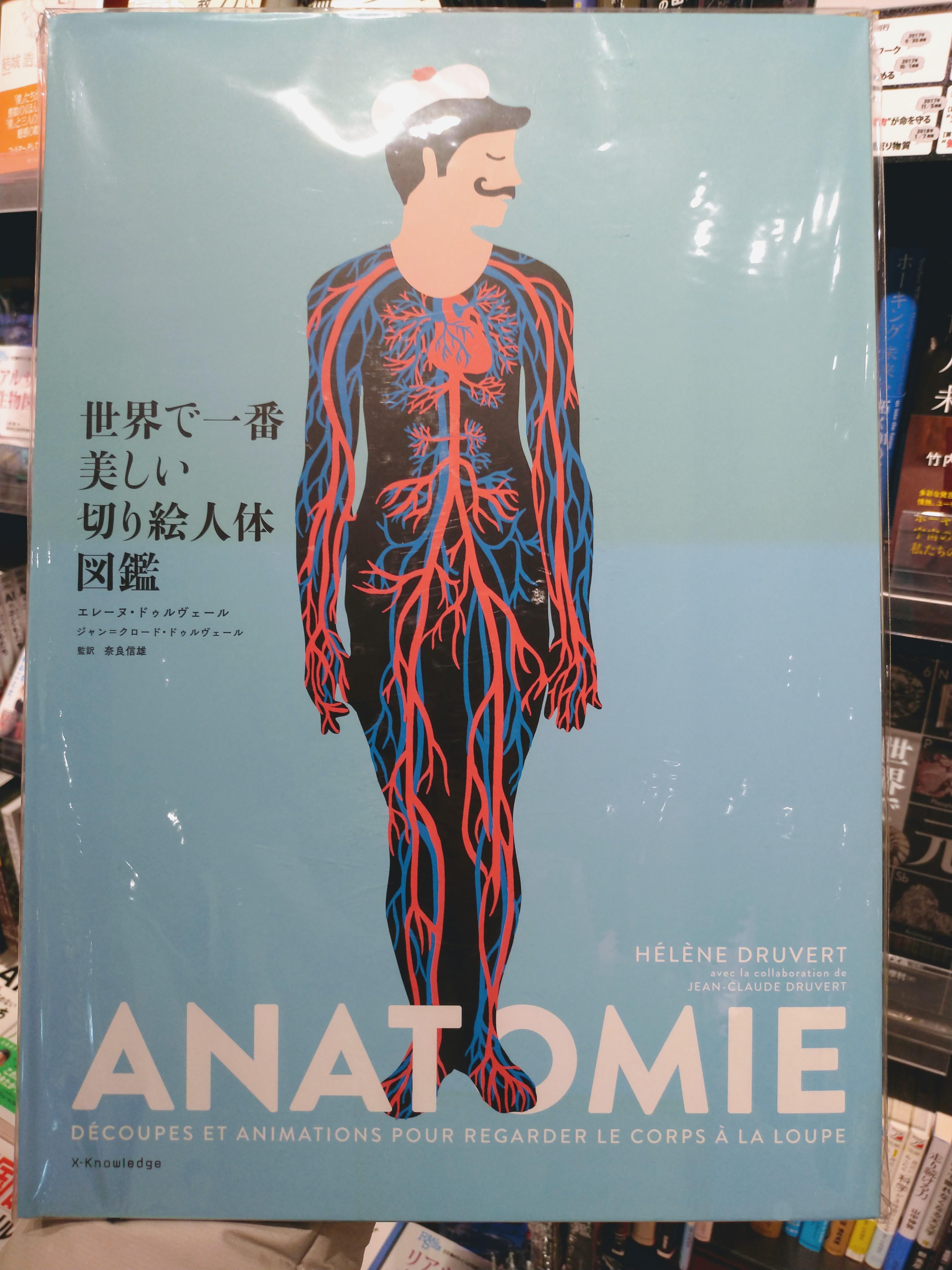 理科の先生に買ってもらいたい「世界で一番美しい切り絵人体図鑑」