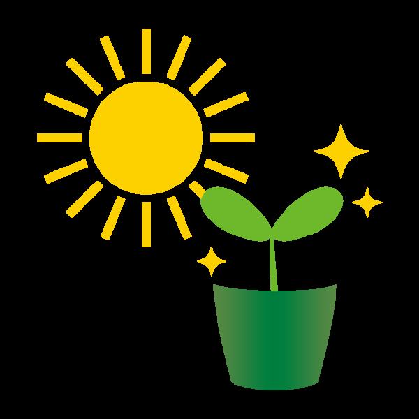 1年花のつくりと植物の分類(穴埋め問題)
