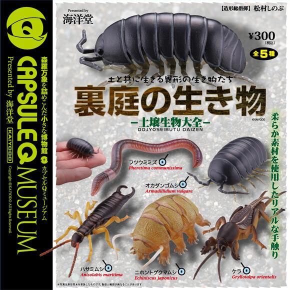 科学がちゃ「裏庭の生き物」がおもしろい
