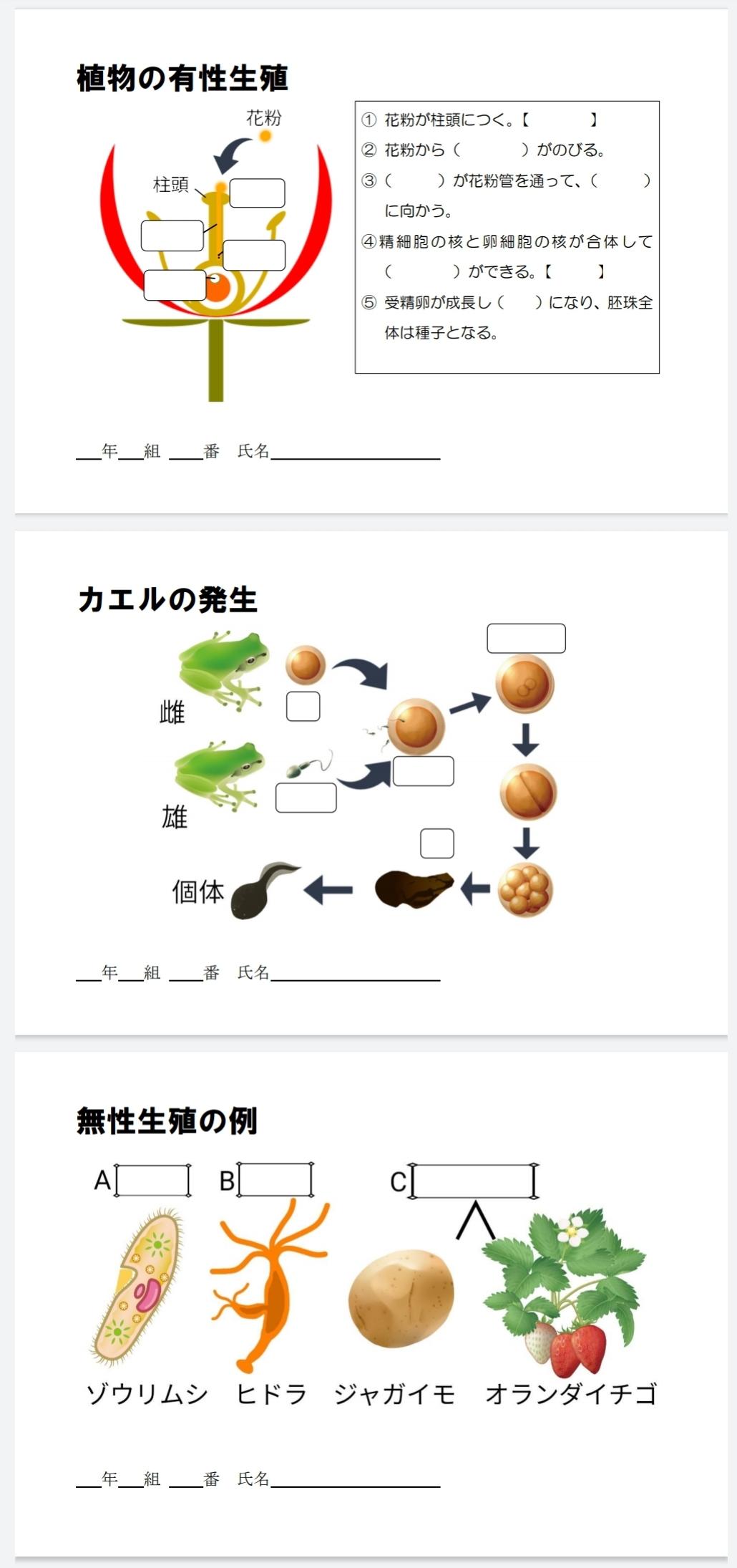 ふたばのワークシート3年(生物分野)
