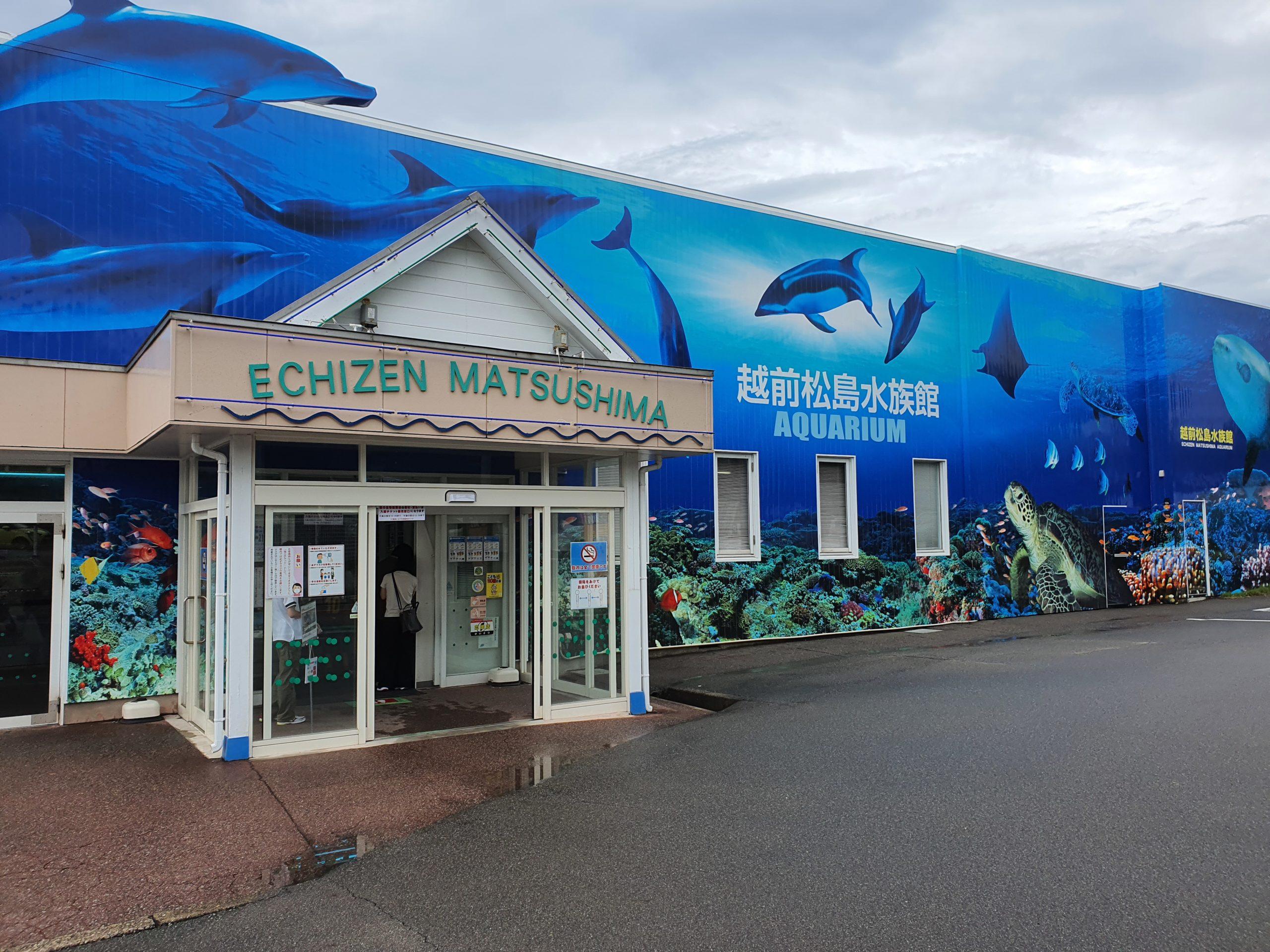 越前松島水族館に行ってきました①