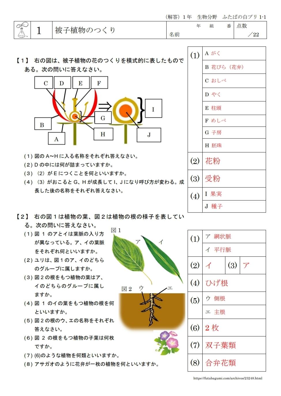 ふたばの白プリ1-1「被子植物のつくり」、1-2「裸子植物と胞子でふえる植物」を公開しました。