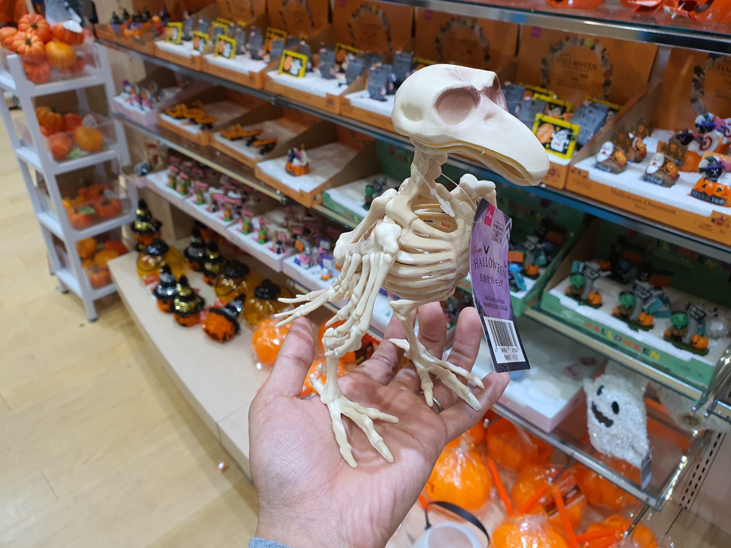 DAISOのハロウィンコーナーで見つけた鳥の骨格標本