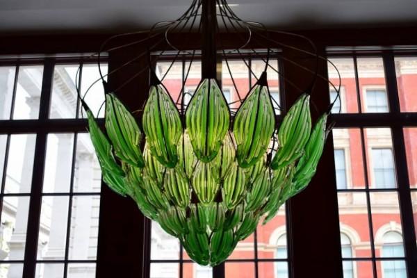 植物の単元で見せたいシャンデリア
