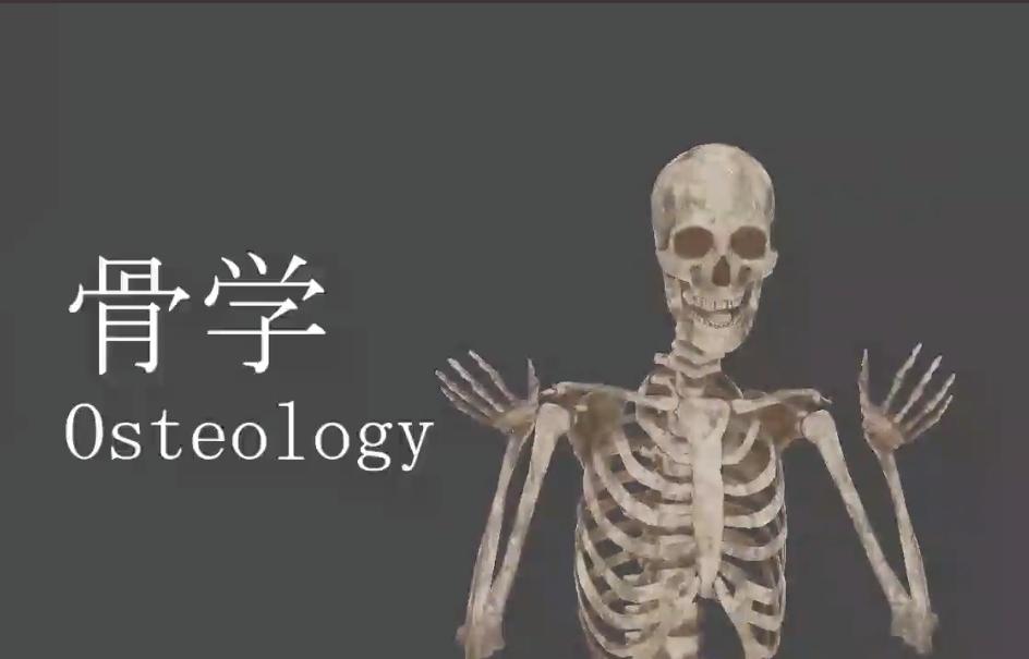 自分を骨にして行う骨の授業がすごい!