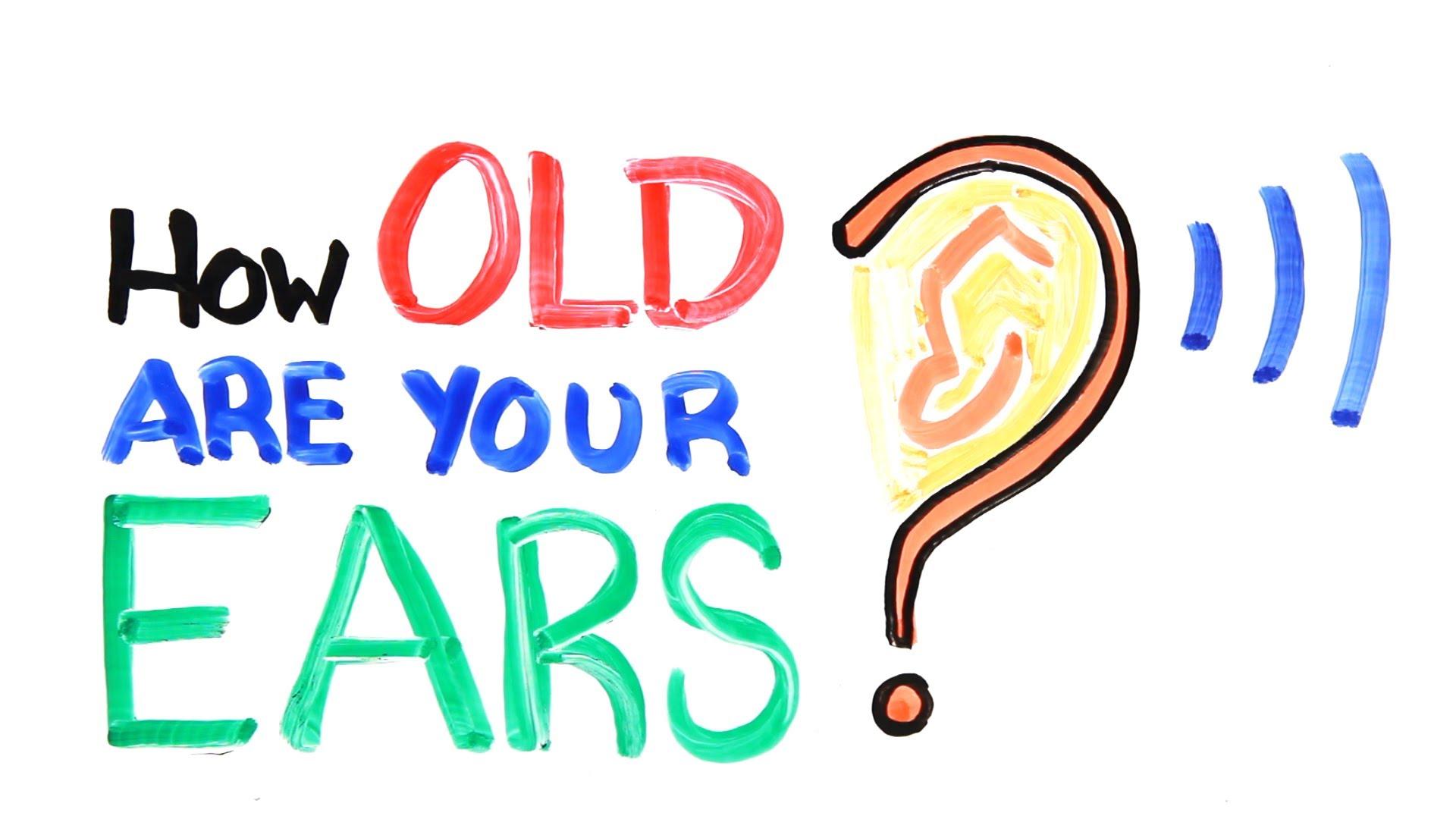 授業で見せたい動画27「HOW OLD ARE YOUR EARS?」