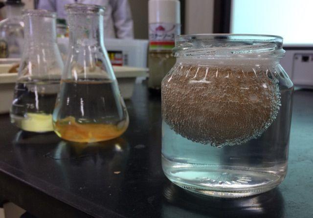 身近な酸とアルカリで実験
