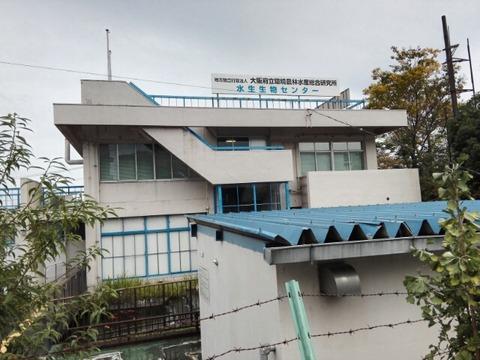 大阪府立水生生物センターに行ってきました