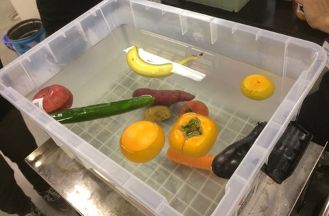 野菜の浮き沈みとボーリングの玉