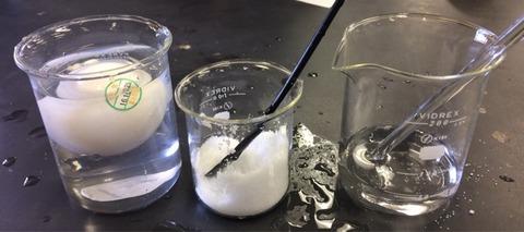 卵の浮き沈みと塩分濃度