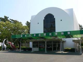 東海大学自然史博物館①