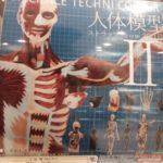 科学ガチャ⑤「人体模型ストラップⅡ」「メンダコホッピンアイ」