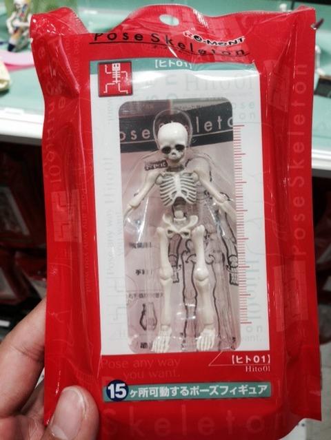 激安ミニ骨格標本「Pose Skeleton」